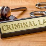 The Criminal Law Process